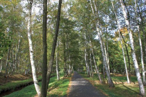 Franzensbad im Herbst 002