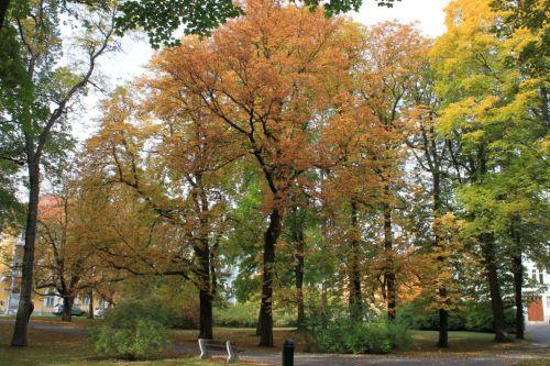 Franzensbad im Herbst 013