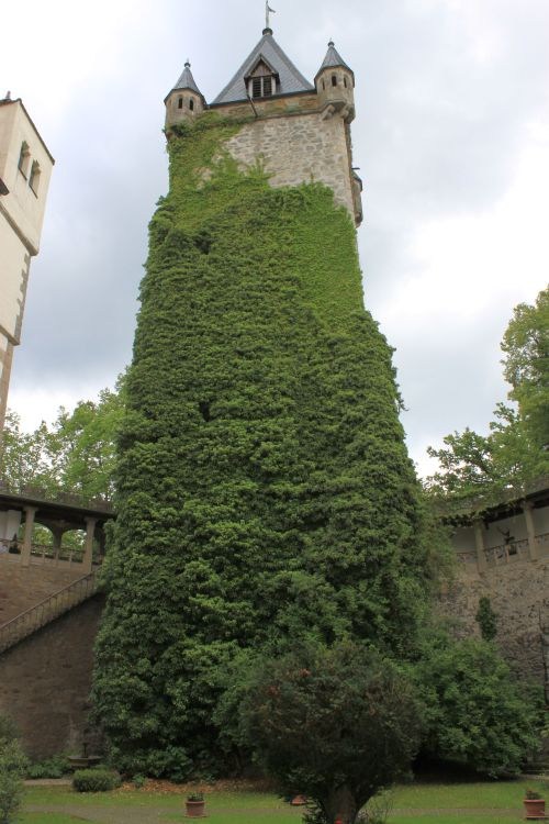 Bodenmais 2014 093 Schloss Egg