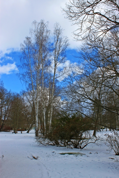 Franzensbad Februar 020