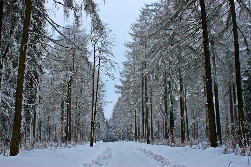 Klingenthal Winter 012