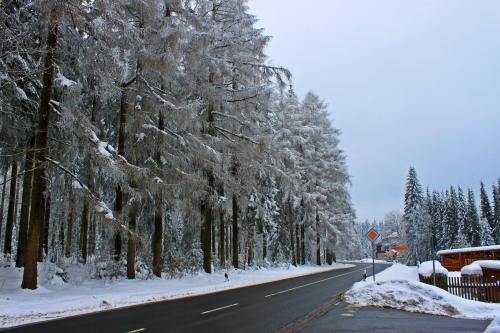 Klingenthal Winter 017