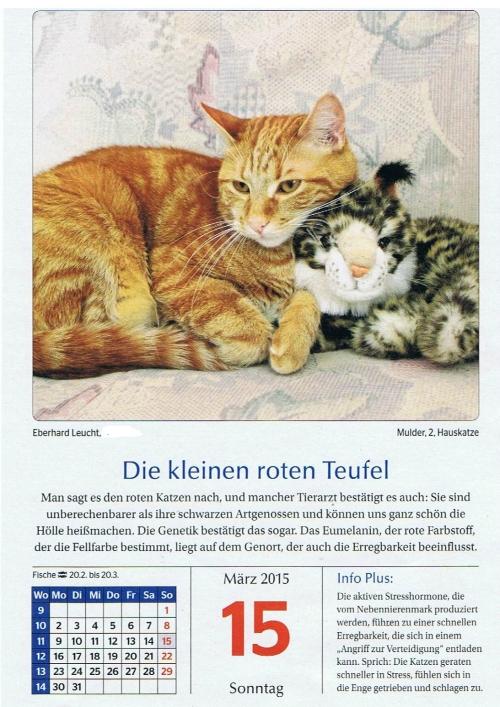 Mulder Kalanderblatt 001