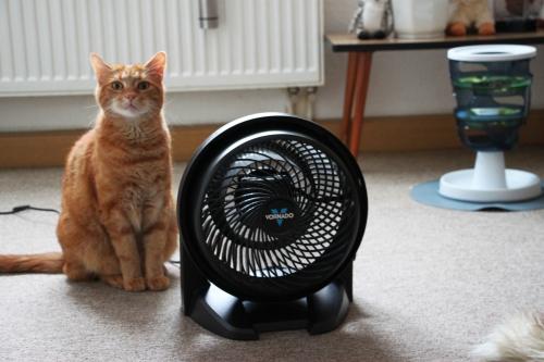 Ventilator 002