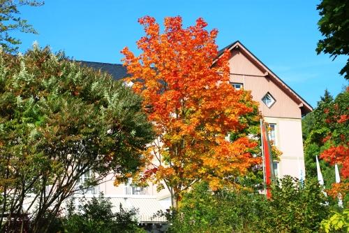 Bad Steben Herbst 025