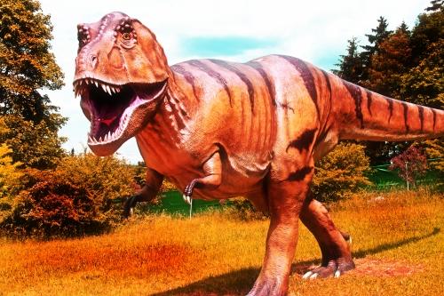 Dinoworld in Hof 019 T Rex