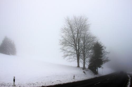 Wintersonntag 015