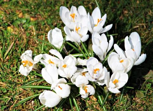 Apriltag (Bad Steben) 010
