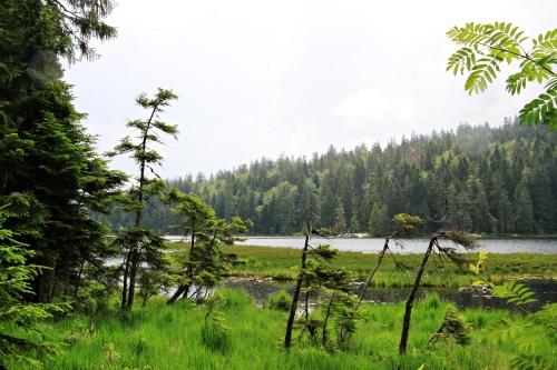 Bayerischer Wald 046Arbersee