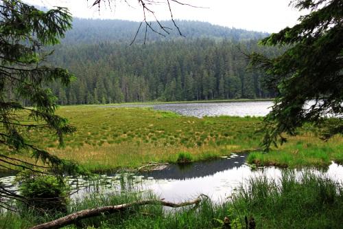 Bayerischer Wald 054Arbersee