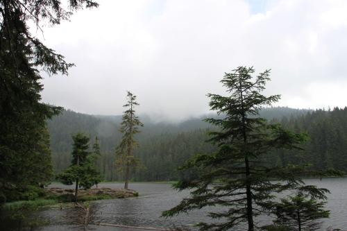 Bayerischer Wald 060Arbersee